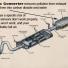 Học tiếng anh chuyên ngành ô tô qua hình ảnh (phần 16)  -  Hệ thống xử lí khí thải
